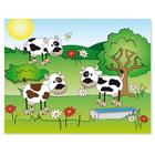 3 tlg. Schulfotomappe / Kindergartenmappe für 13x18 cm mit 2 Einsteckschlitzen - Kuhwiese Produktbild