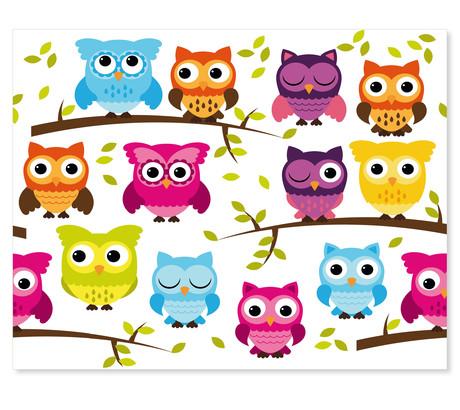 3 tlg. Schulfotomappe / Kindergartenmappe für 13x18 cm mit 2 Einsteckschlitzen - Eulen Produktbild
