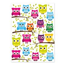 2 tlg. Fotomappe / Kindergartenmappe für 18x24 cm mit Fototasche - Eulen Produktbild