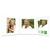 3 tlg. Schulfotomappe / Kindergartenmappe für 13x18 cm mit Fototasche - Kommunion - Konfirmation - Firmung Produktbild Additional View 2 2XS