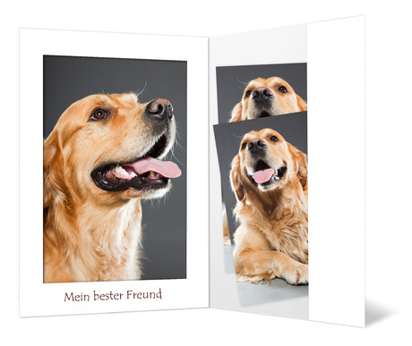 """Portraitmappe mit Tasche für 13x18 cm - Motivdruck """"Tier - Mein bester Freund"""" Produktbild"""