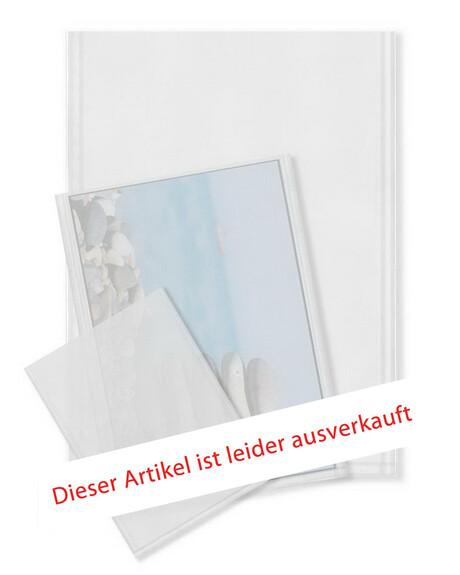 Acetathüllen / Diahüllen 8x10 Zoll 100 Stück Produktbild