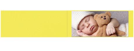 Falt- / Doppelkarte lavinia Limone 9x45 cm 300g/m² Produktbild
